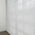 Office Venetian Blinds